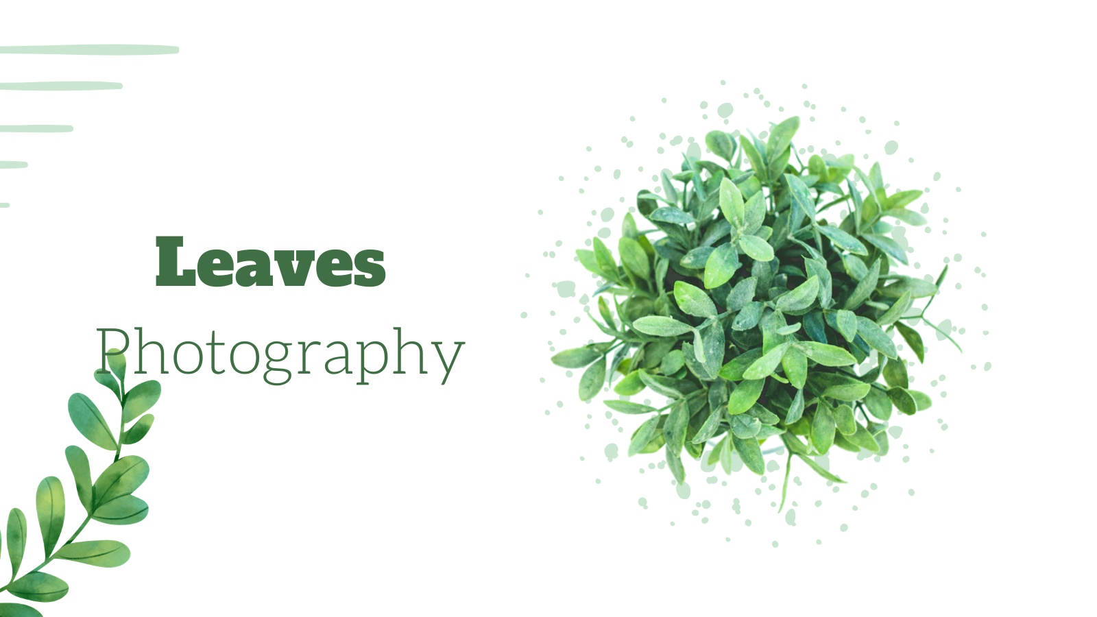 leaves-photography-challenge