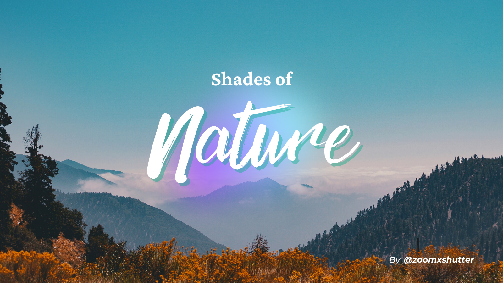 Shades of Nature - Photography Challenge