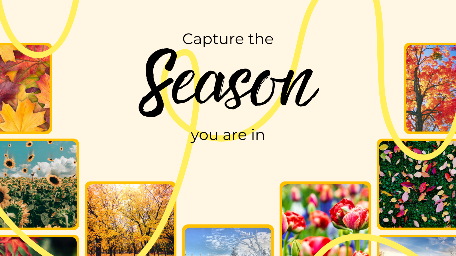 Capture the season you are in - Photography Challenge